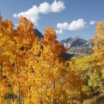 Fall Feeling Matt Inden Photography