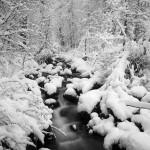 winter cascade